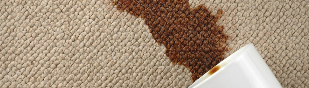 Carpet-Cleaning-stain-removal 1